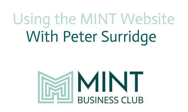 Using the MINT website Video